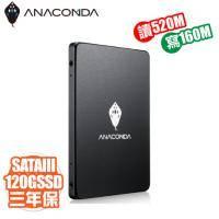巨蟒 ANACOMDA A1 120GB /讀520MB/寫160MB/MLC/*三年換新到府收送*