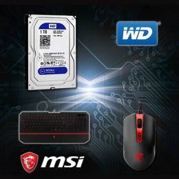 【高興價】WD 藍標 1TB(WD10EZEX)+ 微星 MSI DS100 玩家級電競滑鼠 + 微星 MSI DS4100 攔截者電競鍵盤
