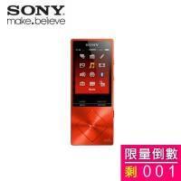 SONY NW-A25/RM